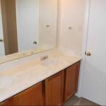Amberly Village Apartment Washroom