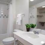 Parkside at Firewheel Apartment Bathroom