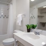 Parkside at Firewheel Apartment Bathroom