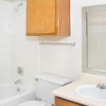 Shiloh Oaks Apartment Washroom