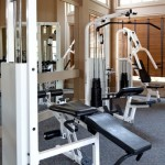 Stoneleigh on Spring Creek Apartment Fitness Center